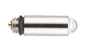 Fiber Optic Bulb